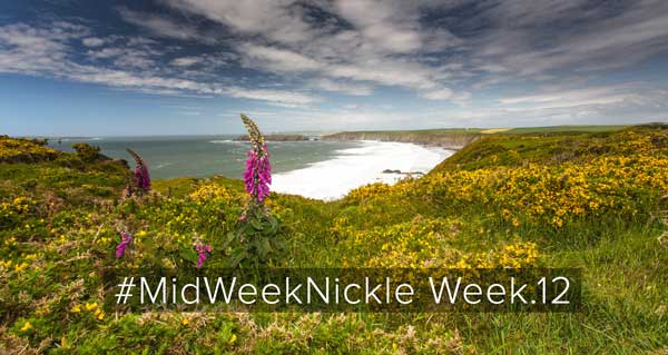 #MidWeekNickle_week.12_feffe_kaufmann_social_media_blog